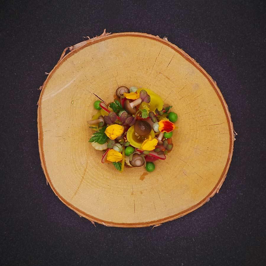 Vorspeise: Gemüse Acker 3.0